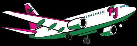 Plane Jane's Plane